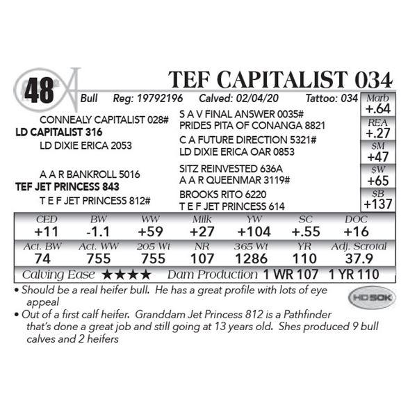 Tef Capitalist 034