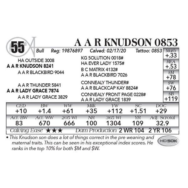 A A R Knudson 0853