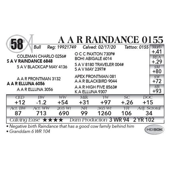 A A R Raindance 0155