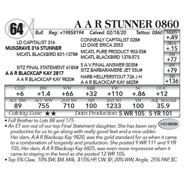 A A R Stunner 0860