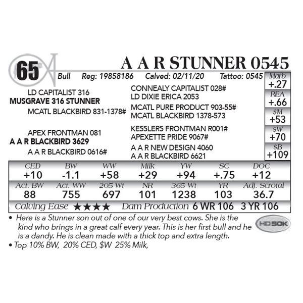 A A R Stunner 0545