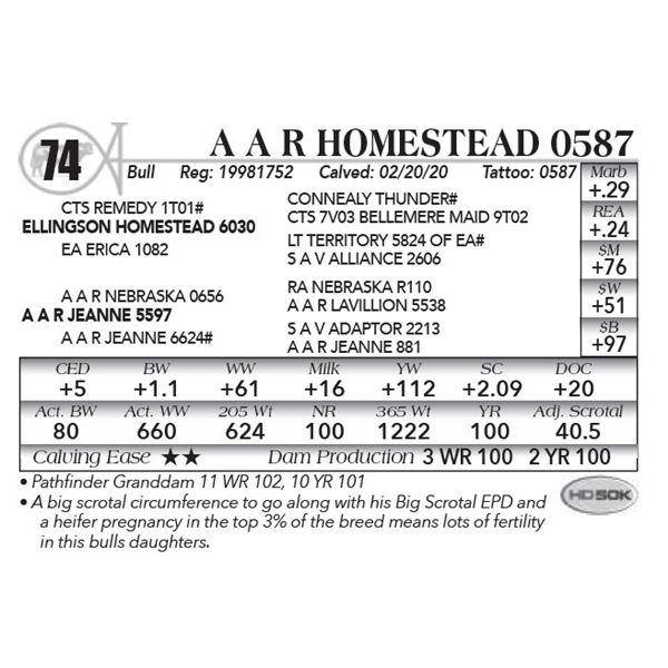 A A R Homestead 0587