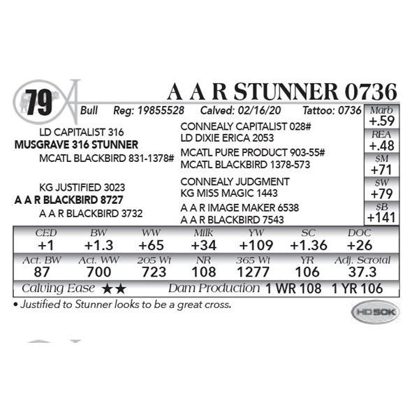 A A R Stunner 0736