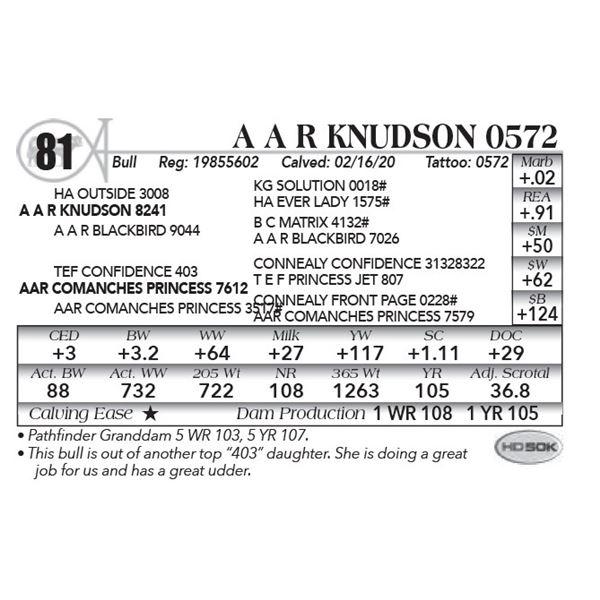 A A R Knudson 0572