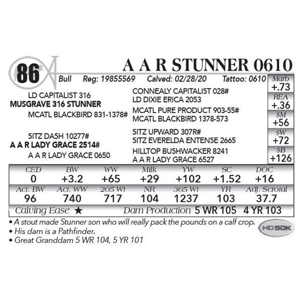 A A R Stunner 0610