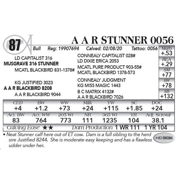A A R Stunner 0056