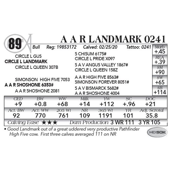 A A R Landmark 0241