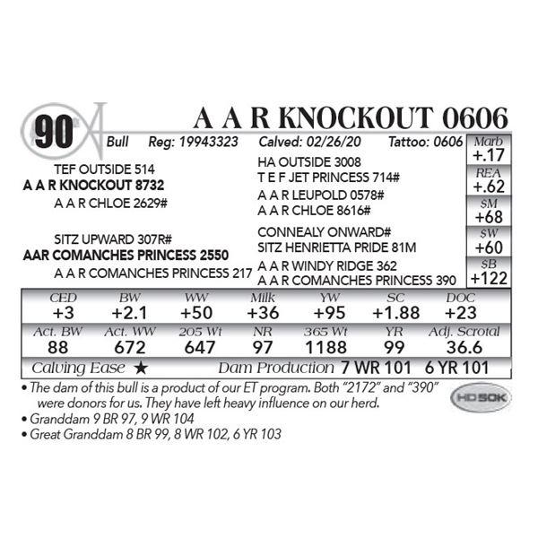 A A R Knockout 0606