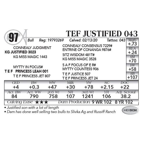 TEF Justified 043