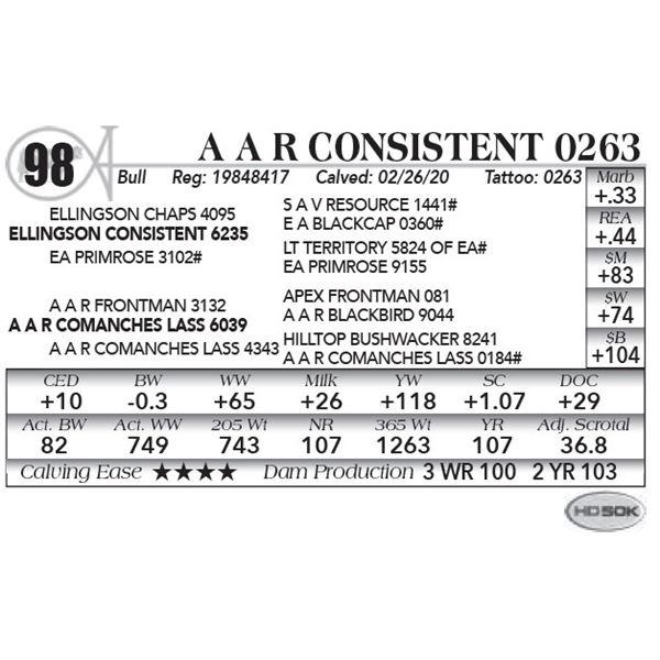 A A R Consistent 0263