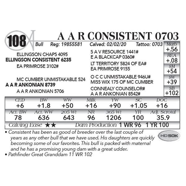 A A R Consistent 0703