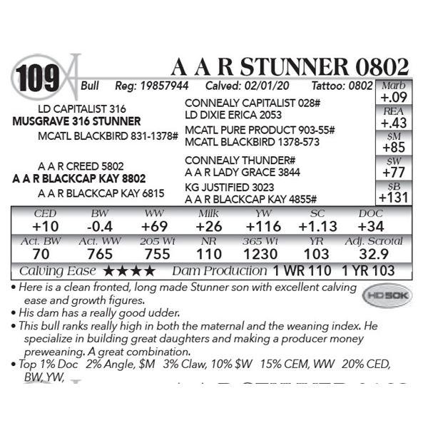 A A R Stunner 0802