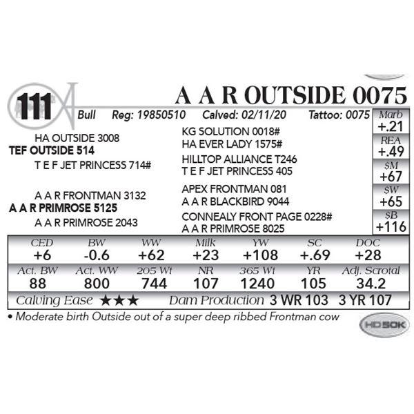 A A R Outside 0075