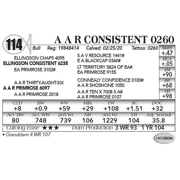 A A R Consistent 0260