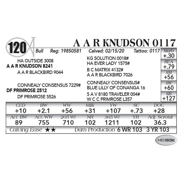 A A R Knudson 0117