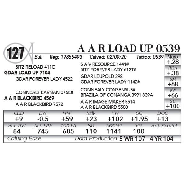A A R Load Up 0539