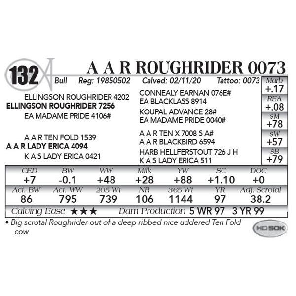 A A R Roughrider 0073
