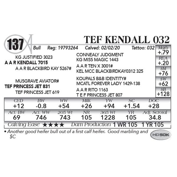 TEF Kendall 032