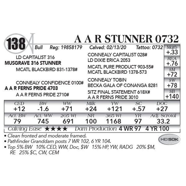 A A R Stunner 0732
