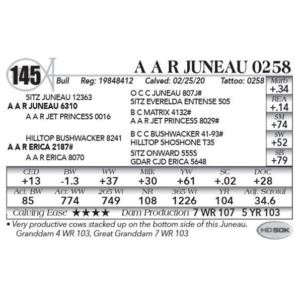A A R Juneau 0258