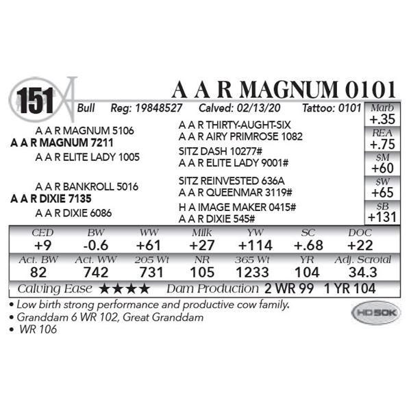 A A R Magnum 0101