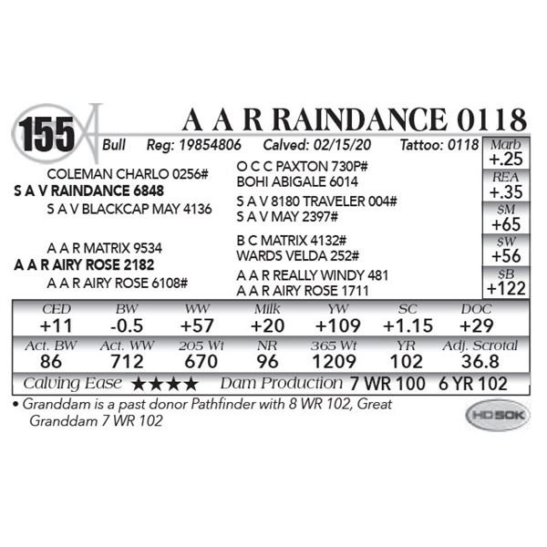 A A R Raindance 0118