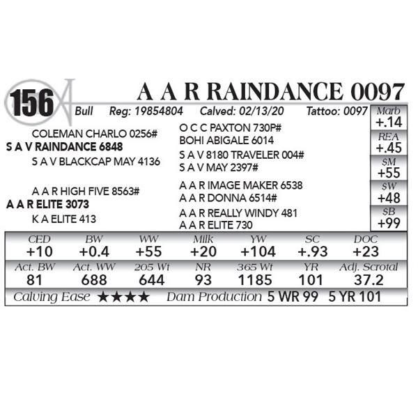A A R Raindance 0097
