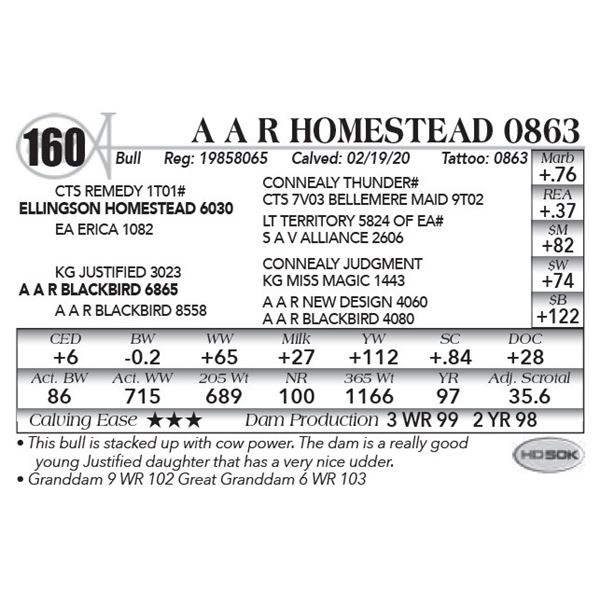A A R Homestead 0863