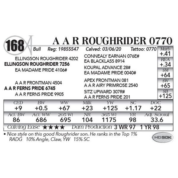 A A R Roughrider 0770