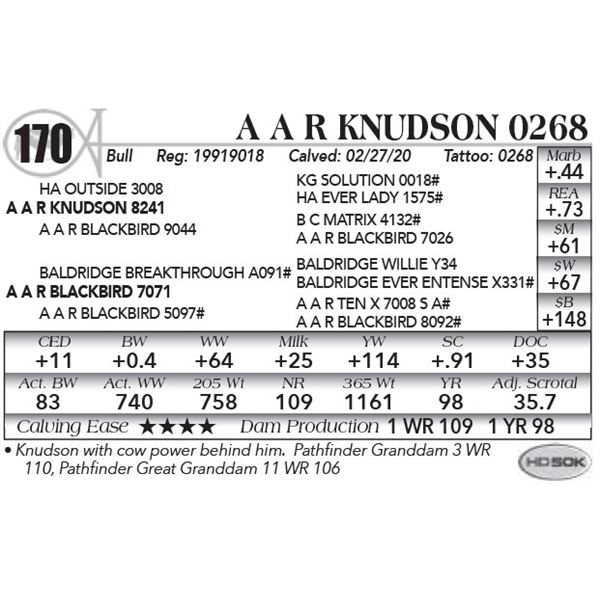 A A R Knudson 0268