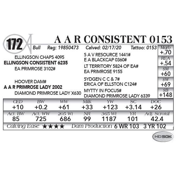 A A R Consistent 0153