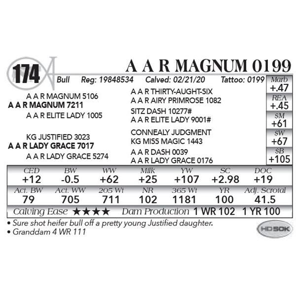 A A R Magnum 0199