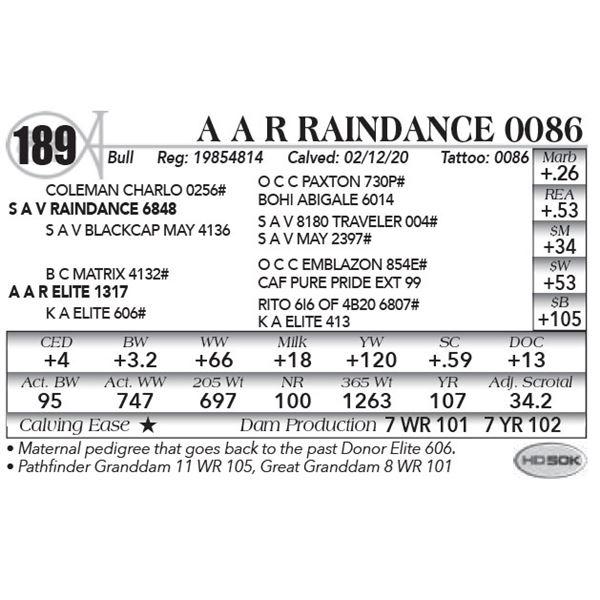 A A R Raindance 0086
