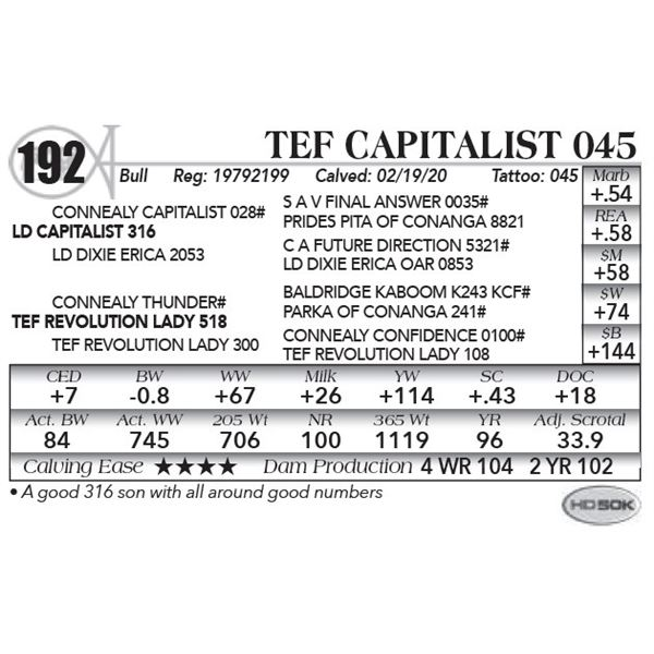 Tef Capitalist 045