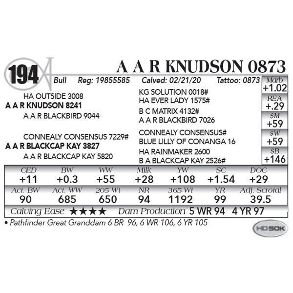 A A R Knudson 0873