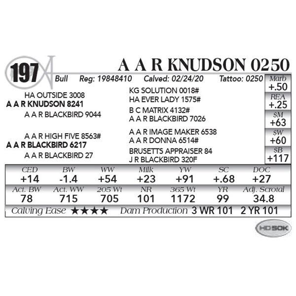 A A R Knudson 0250
