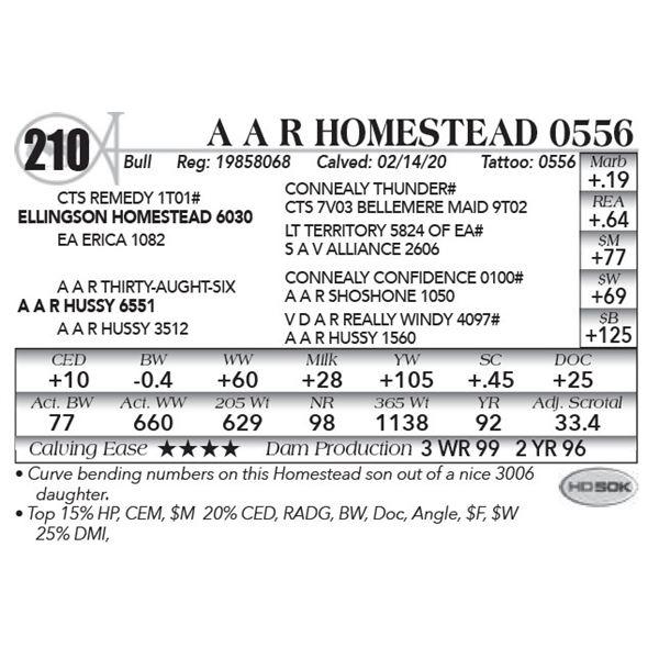 A A R Homestead 0556