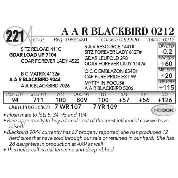 A A R Blackbird 0212
