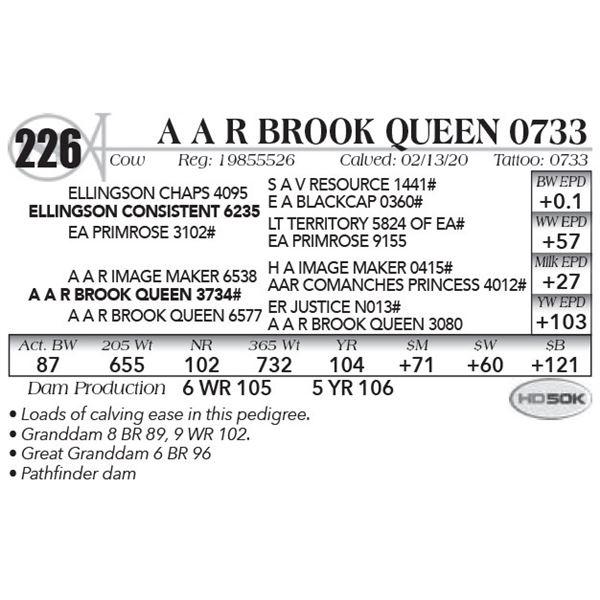 A A R Brook Queen 0733