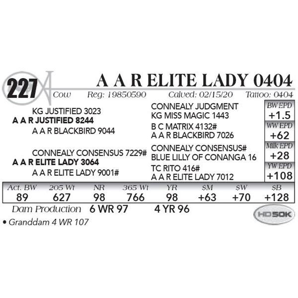 A A R Elite Lady 0404