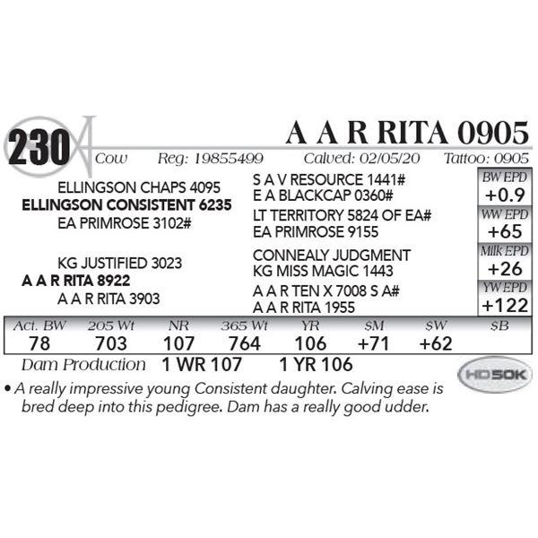 A A R Rita 0905