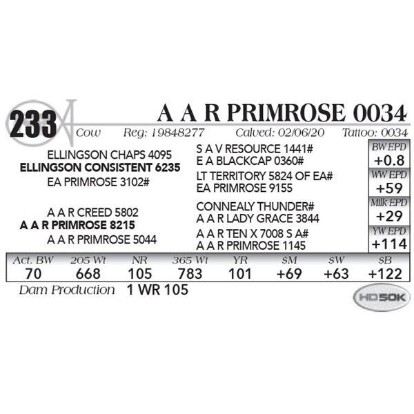 A A R Primrose 0034