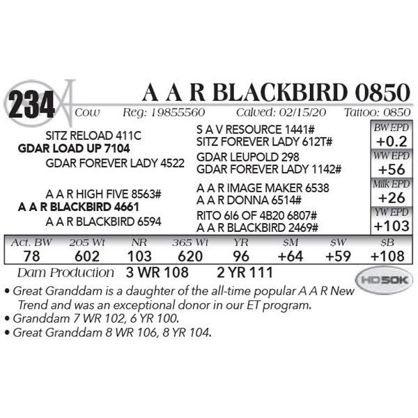 A A R Blackbird 0850