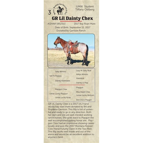 GR Lil Dainty Chex - 2017 Bay Roan Mare