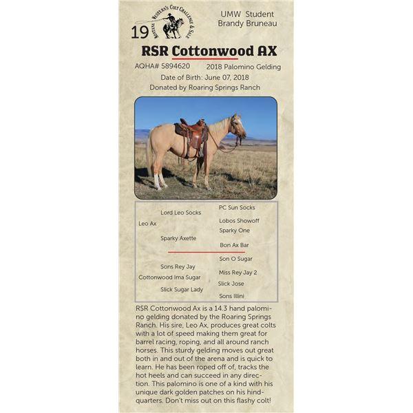 RSR Cottonwood AX - 2018 Palomino Gelding