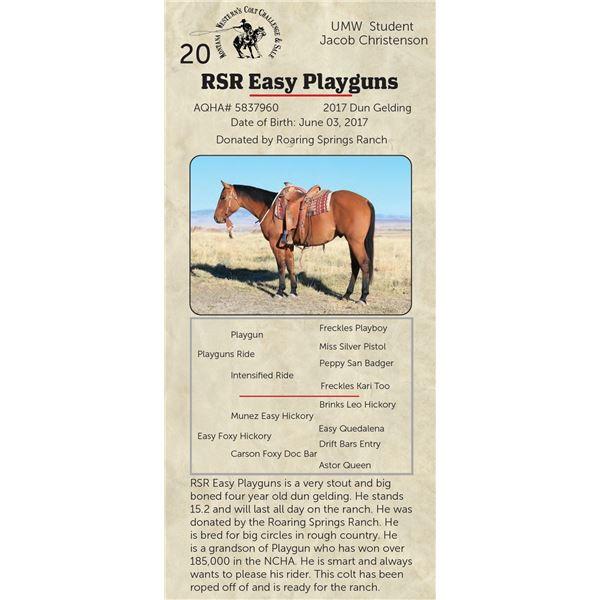 RSR Easy Playguns - 2017 Dun Gelding