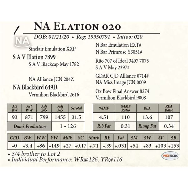 NA Elation 020