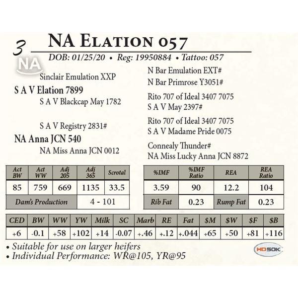 NA Elation 057