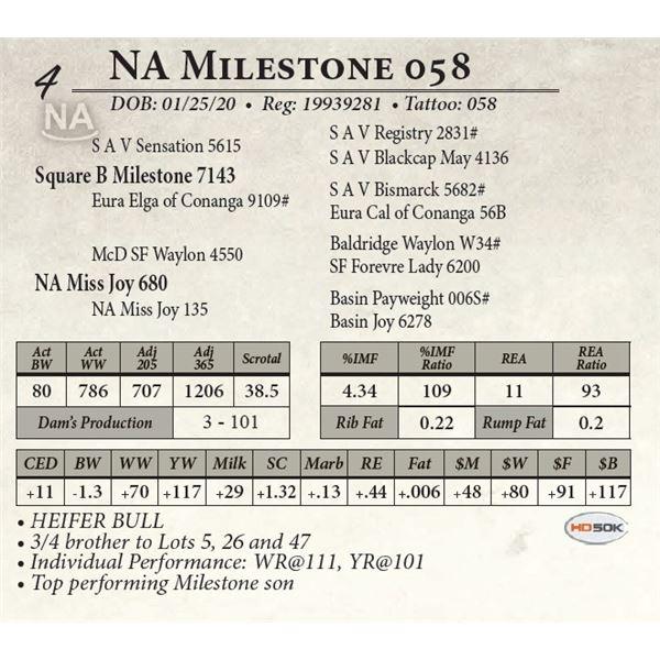 NA Milestone 058