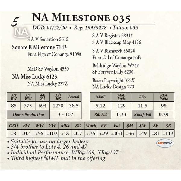 NA Milestone 055